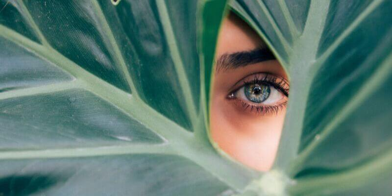 un occhio sbircia da dietro una foglia